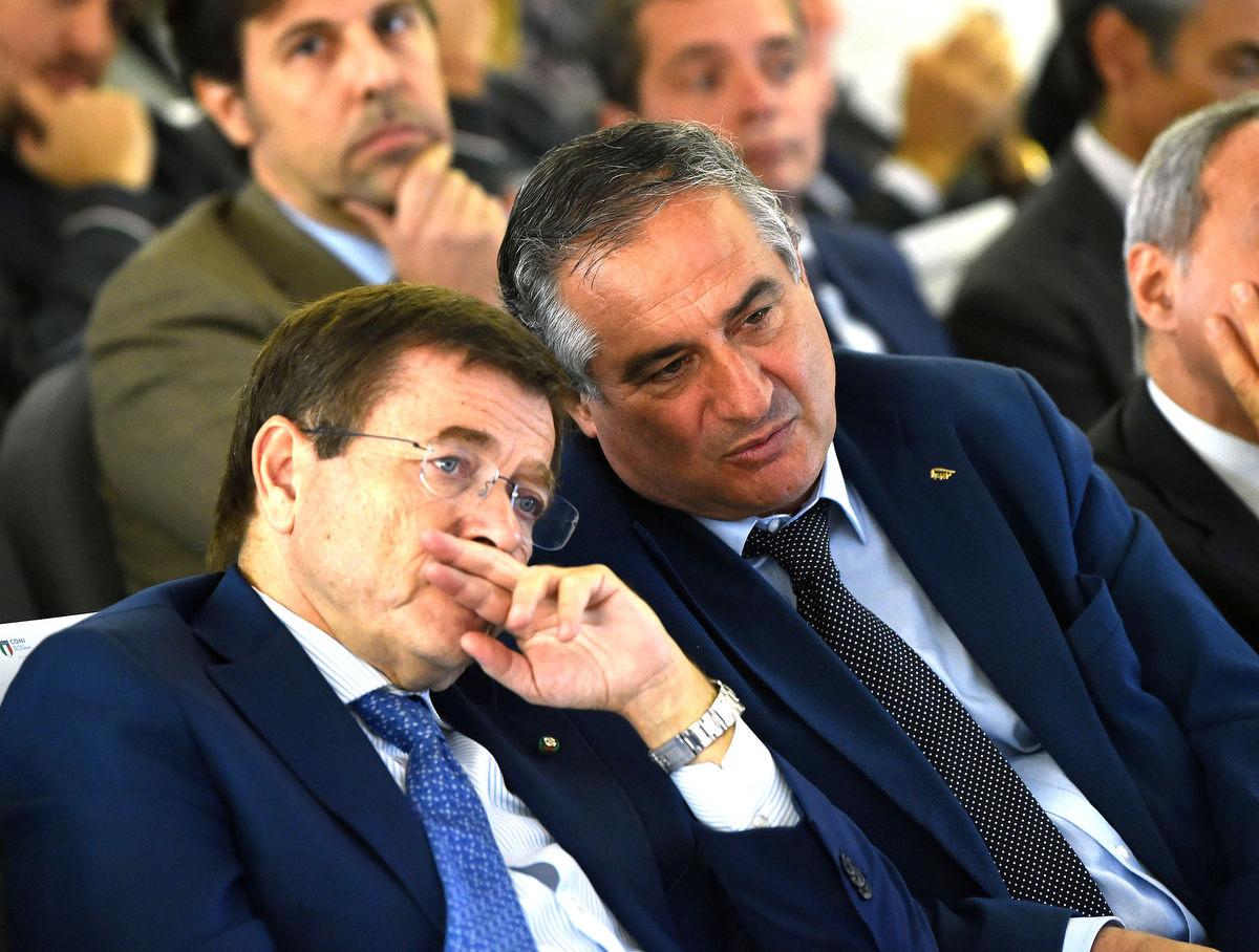 management olimpico mezzelani gmt039
