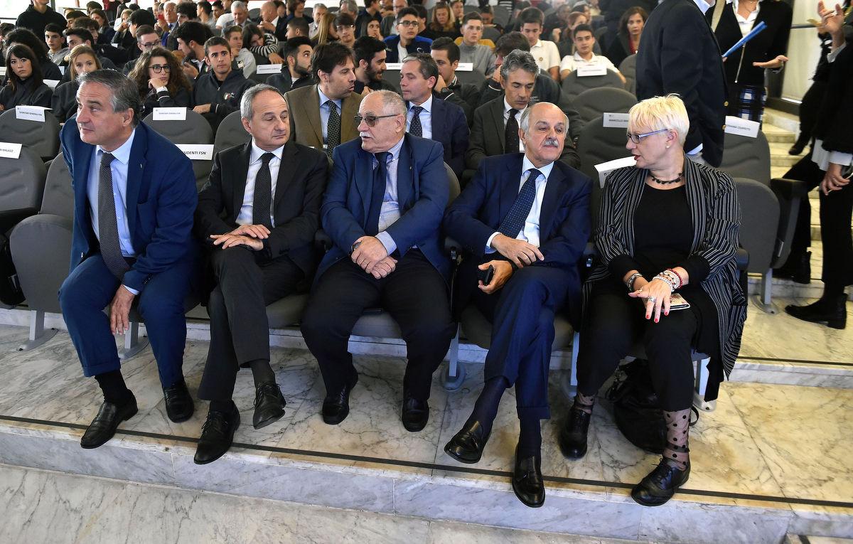management olimpico mezzelani gmt070